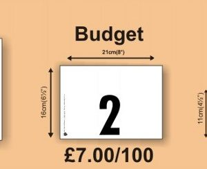 Plain Budget Numbers